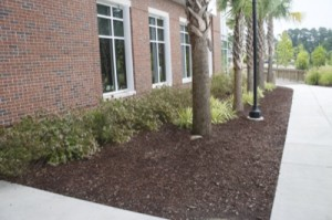 HTC Landscaping by Seed Slingers