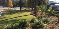 Brook Stadium, Coastal Carolina Univeristy - Landscaping by Seed Slngers, Aynor SC