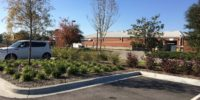 Publix Carolina Forest - Landscaping by Seed Slngers, Aynor SC